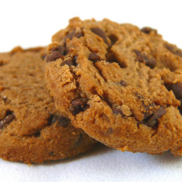 Crunchy Biscuits is live on the web.  Welcome.